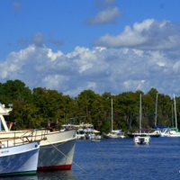 World of Wooden Boats...the Festival in Madisonville, LA