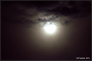 supermoon sept 2014 015.NEF