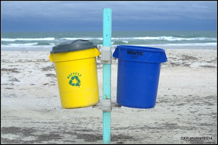 beachcombing nov 097.NEF