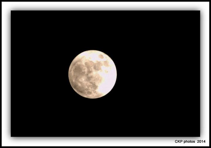 new moon november 070.NEF