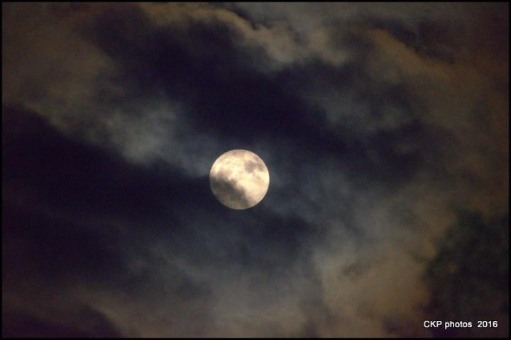 harvest-moon-sept-2016-008-nef
