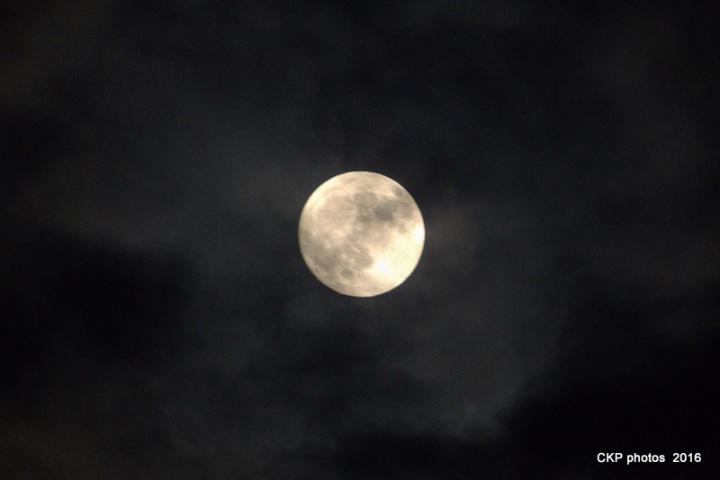 harvest-moon-sept-2016-013-nef