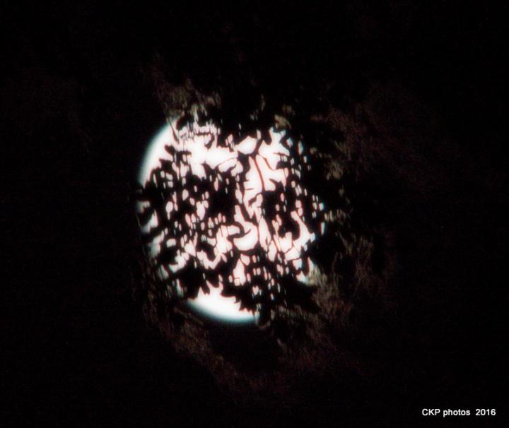 oct-12-2016-moon-025-nef